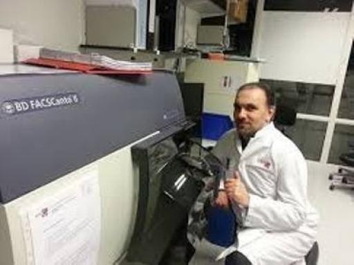سلول درمانی سرطان با استفاده از سلول های دندریتیک