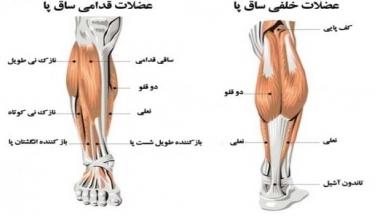درد در قسمت قدامی پا