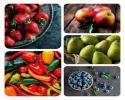 ۵ میوه را هر روز بخورید، تا چاق نشوید!