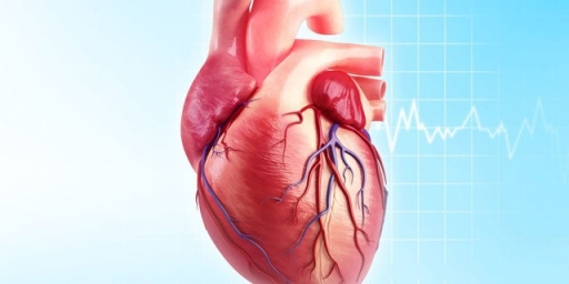 کاهش ۲۵ درصدی مرگ ناشی از حوادث قلبی و مغزی تا سال ۱۴۰۴
