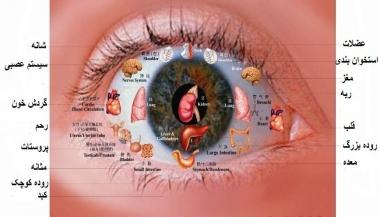 تشخیص چشمی بیماری
